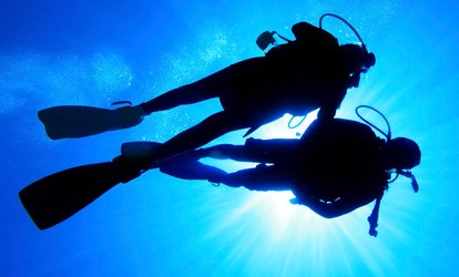 Discover <strong>Scuba</strong> Class for One, Two, or Four at <strong>Scuba</strong> Unlimited (Up to 52% Off)