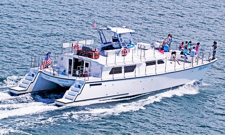 75-Minute Lighthouse Tour by Boat for Two or Four from Bay Spirit Tours (Up to 53% Off)