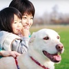 Up to 69% Off Pet Boarding or Dog-Obedience Class