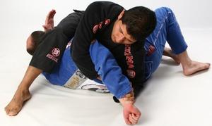 Dimitri Chrisos Jiu Jitsu Academy: 12 Weeks of Brazilian Jiu Jitsu and Self Defense Classes at Dimitri Chrisos Jiu Jitsu (75% Off)