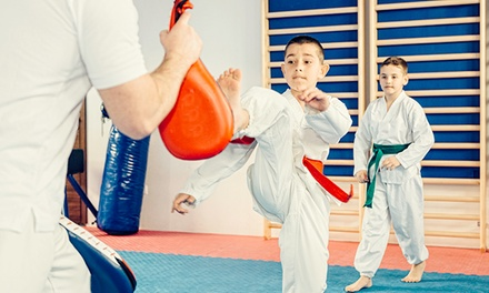 $28 for $79 Worth of Martial-Arts Lessons — Ultimate Martial Arts Academy