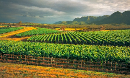 Hunter Valley Wine Tour, Lunch & Transfers: Child $64 or 1 $129 or 2 Adults $254 with AAT Kings Up to $390 Value