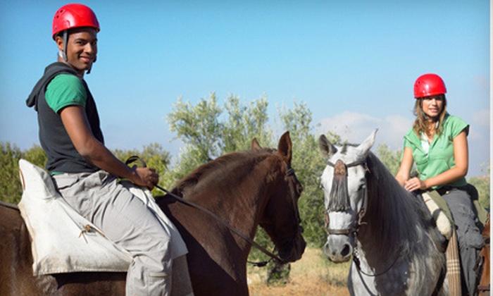 Joshua's Heritage Farm - Stonehouse: $25 for $50 Worth of Horseback-Riding Lessons at Joshua's Heritage Farm