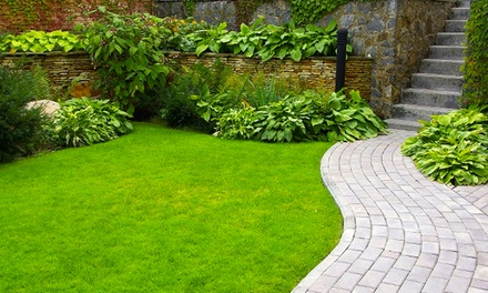 Weed-Control Treatment with Optional Lawn Fertilizer from Weed Man (Up to 82% Off)