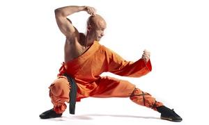 CHAN WU BASSANO: 5 o 10 lezioni di Taijiquan, Kung Fu Shaolin o Sanda (sconto fino a 80%)