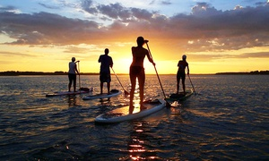 Palmetto Paddle Sports: Standup-Paddleboarding Rental with Instruction for Two or Four from Palmetto Paddle Sports (Up to 63% Off)