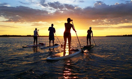 Standup-Paddleboarding Rental with Instruction for Two or Four from Palmetto Paddle Sports (Up to 63% Off)