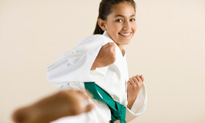 Kang's Mixed Martial Arts - Aspen Hill: Ten Classes or One Month of Mixed Martial Arts Classes with Uniform at Kang's Mixed Martial Arts (Up to 85% Off)