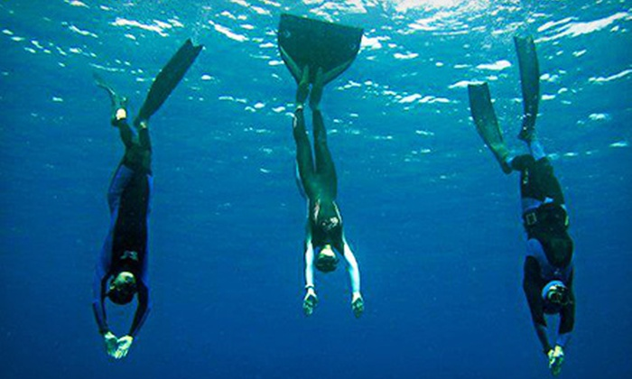 H2O Dive Center - North Miami: $89 for a Freediving and Spearfishing Class from H2O Dive Center ($199 Value)