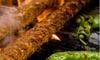 Up to 19% Off Mediterranean Cuisine at A La Turka