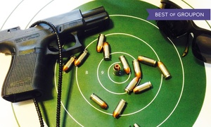 MPS Solutions: NRA Home Firearms Safety Class for One or Two from MPS Solutions (40% Off)