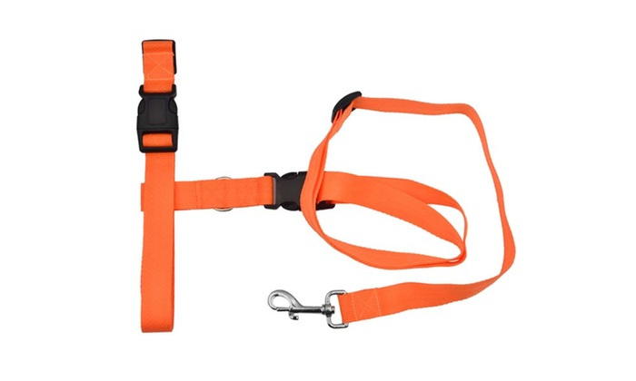 Hands Free Dog Leash South Africa