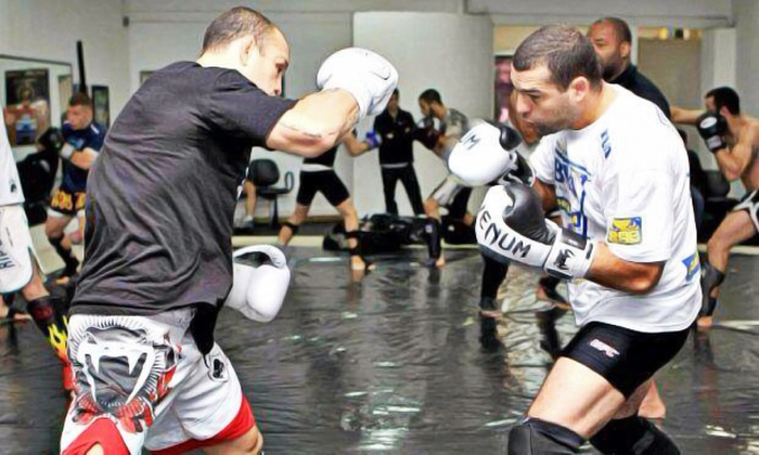 Wand Fight Team - Paradise: 15 or 25 MMA Fitness Classes at Wand Fight Team (Up to 88% Off)