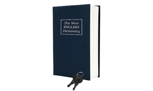 Dictionary Diversion Safe with Keyed Lock