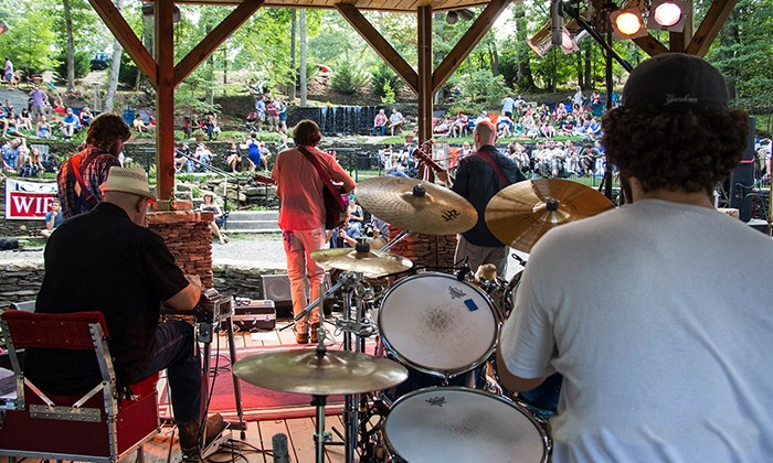 Reevestock Music Festival - Elkin's Hidden Amphitheater: Reevestock Music Festival at Elkin's Hidden Amphitheater on Saturday, August 1, at 2 p.m. (Up to 33% Off)