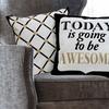 100% Cotton Contemporary Cotton Decorative Pillows (2-Pack)