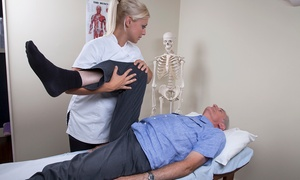 The Pain Clinic: One-Hour Osteopathic Session for £17 at The Pain Clinic (62% Off)
