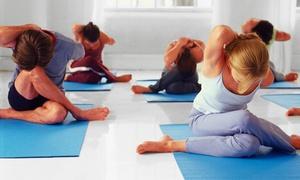 Yoga Spot Inc: $29 for Four Introductory Vinyasa or Prenatal Yoga Classes at Yoga Spot Inc ($64 Value)