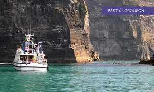 O'Brien Line: Cruise To Cliffs of Moher and Optionally Inisheer for One or Family with O'Brien Line