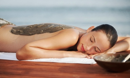 $75 for Consult, Test and Mud Pack Detox at Dynamic Health