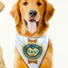 Up to 75% Off Personalized Dog Bandanas