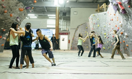 Private Kids Rock-Climbing Party for 6 or 12 at The Hive (65% Off)