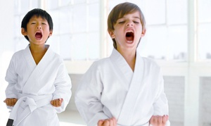 Go No Sen Karate: $15 for One Month of Martial-Arts Classes and One Private Lesson with Uniform at Go No Sen Karate ($239 Value)