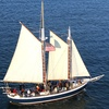 49% Off Sailing Tours from SF Bay Adventures