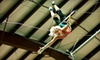 Up to Half Off Flying-Trapeze Lesson at Trapeze Austin