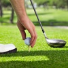Up to 50% Off at Blackhawk Trace Golf Club