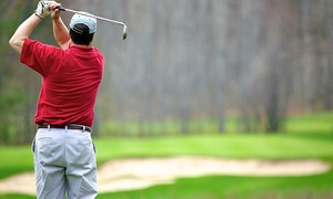 Norm Vacovsky Golf: 1 or 3 One-on-One Golf Lessons with Former PGA Golf Pro Norm Vacovsky at Norm Vacovsky Golf (Up to 61% Off)