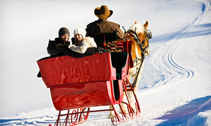 Garden Valley Trail Rides - Garden Valley: 40-Minute Horse-Drawn Sleigh Ride for 2, 4, or Up to 12 from Garden Valley Trail Rides (Up to 67% Off)
