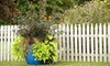 Flowerland - Kentwood: $15 for a One-Hour Landscaping Class on May 8, 15, or 22 at Fruit Basket Flowerland ($30 Value)