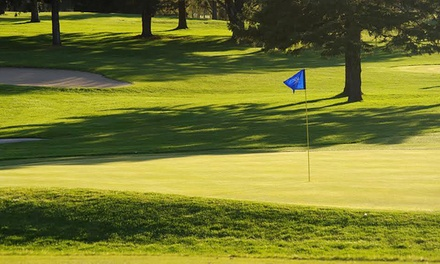 18-Hole Round of Golf for Two or Four Including Cart at Faribault Golf Club (Up to 50% Off)