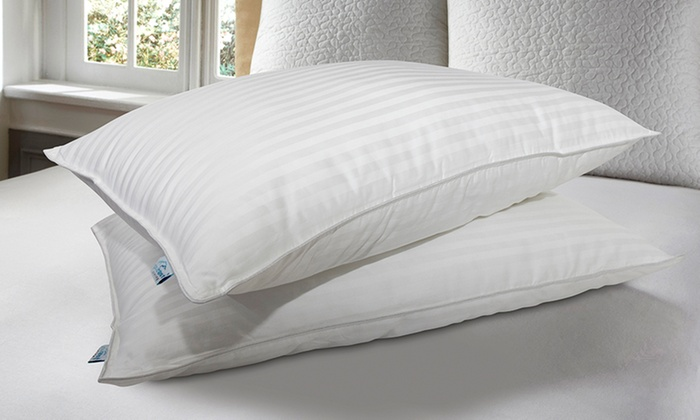 Pure Rest Gel Fiber Pillows Groupon Goods Fascinating Allergy Free Pillow Covers