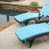Lakeport Outdoor Adjustable Chaise Lounges with Cushions (Set of 2)