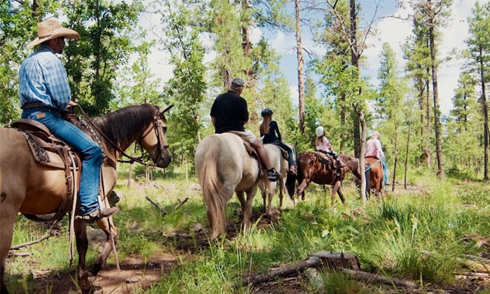 High Mountain Trail Rides - Flagstaff: Two-Hour Trail Ride on Horseback with Lunch for Two or Four from High Mountain Trail Rides (Up to 55% Off)