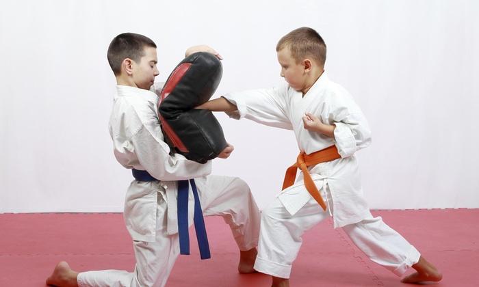 Doha Taekwondo - La Crescenta-Montrose: $25 for $139 Groupon — Doha Taekwondo