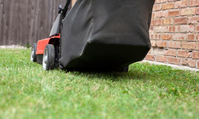 Brightstar Lawn Service & Landscaping - Fort Lauderdale: Six Weeks of Biweekly or Weekly Lawn-Mowing Services from Brightstar Lawn Service & Landscaping (Up to 55% Off)