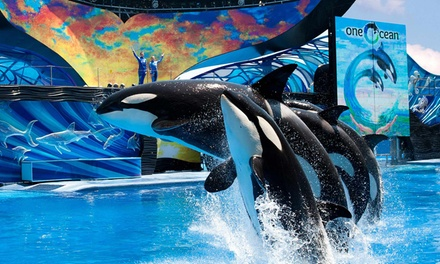 "$79 for One Combo Ticket at SeaWorld Orlando and Aquatica, SeaWorld""s Waterpark (Up to $157.29 Value)"