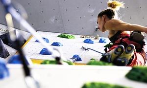 Kletterhalle Wiesbaden: 2 Stunden Kletter-Grundkurs für 1, 2 oder 4 Personen in der Kletterhalle Wiesbaden (bis zu 52% sparen*)