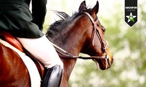 Centro Ippico Sportivo Campure: 3, 5 o 10 lezioni di equitazione (sconto fino a 78%)