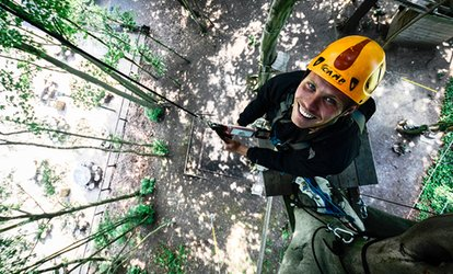 image for High Ropes Experience at Beamish Wild (48% Off)