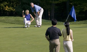 The Golf Boot Camp: One or Three Private Golf Lessons at The Golf Boot Camp (Up to 67% Off)