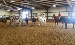 Rockwall Hills Equestrian Center: $38 for $75 Worth of Horseback Riding — Rockwall Hills Equestrian Center