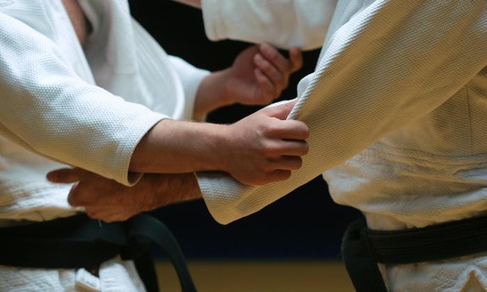 Select Jiu-Jitsu Academy of Martial Arts - Austin Avenue: $49 for $100 Worth of Martial-Arts Lessons — Select Jiu-Jitsu Academy of Martial Arts