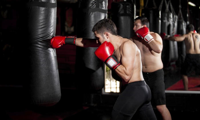 Premier Martial Arts - Premier Martial Arts: One or Two Weeks of Kickboxing or Krav Maga Classes or a Birthday Party at Premier Martial Arts (Up to 64% Off)