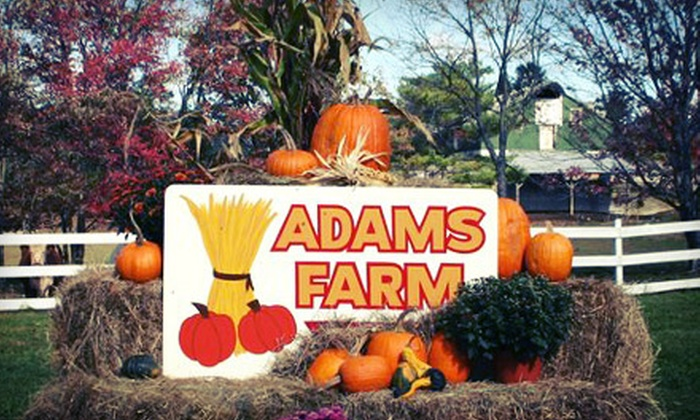 Adam's Farm - Cumberland: $16 for a Fall Farm Outing for Up to Six at Adam's Farm (Up to $31.50 Value). Three Weekends Available.