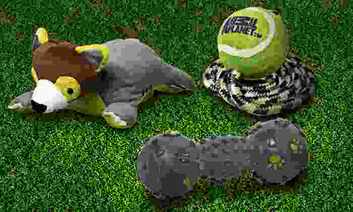 Animal Planet Dog Toy Four-Pack: $13.99 for an Animal Planet Pet Toy Four-Pack ($26.50 List Price). Multiple Assortments Available. Free Returns.
