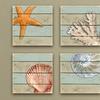"12""x12"" Sea Life Gallery-Wrapped Canvas Coastal Decor Prints"